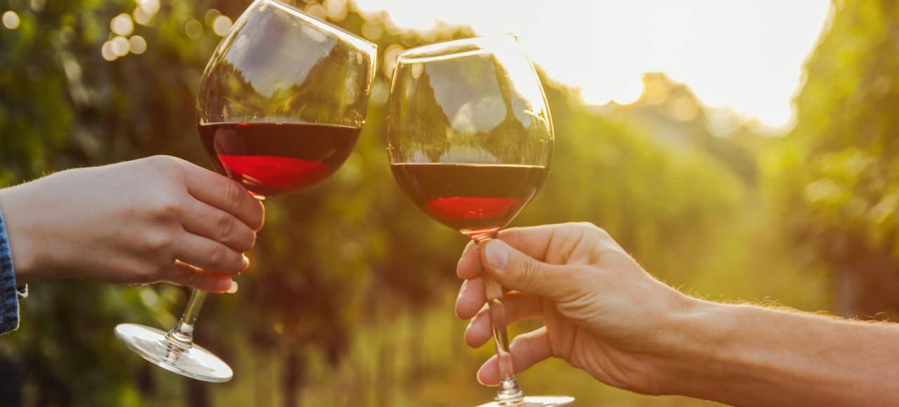 Dolenjski vinogradi, vina in zidanice
