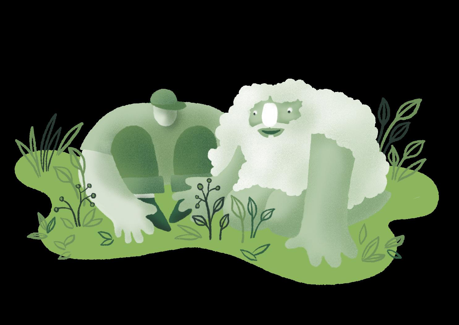 nabiranje zeli